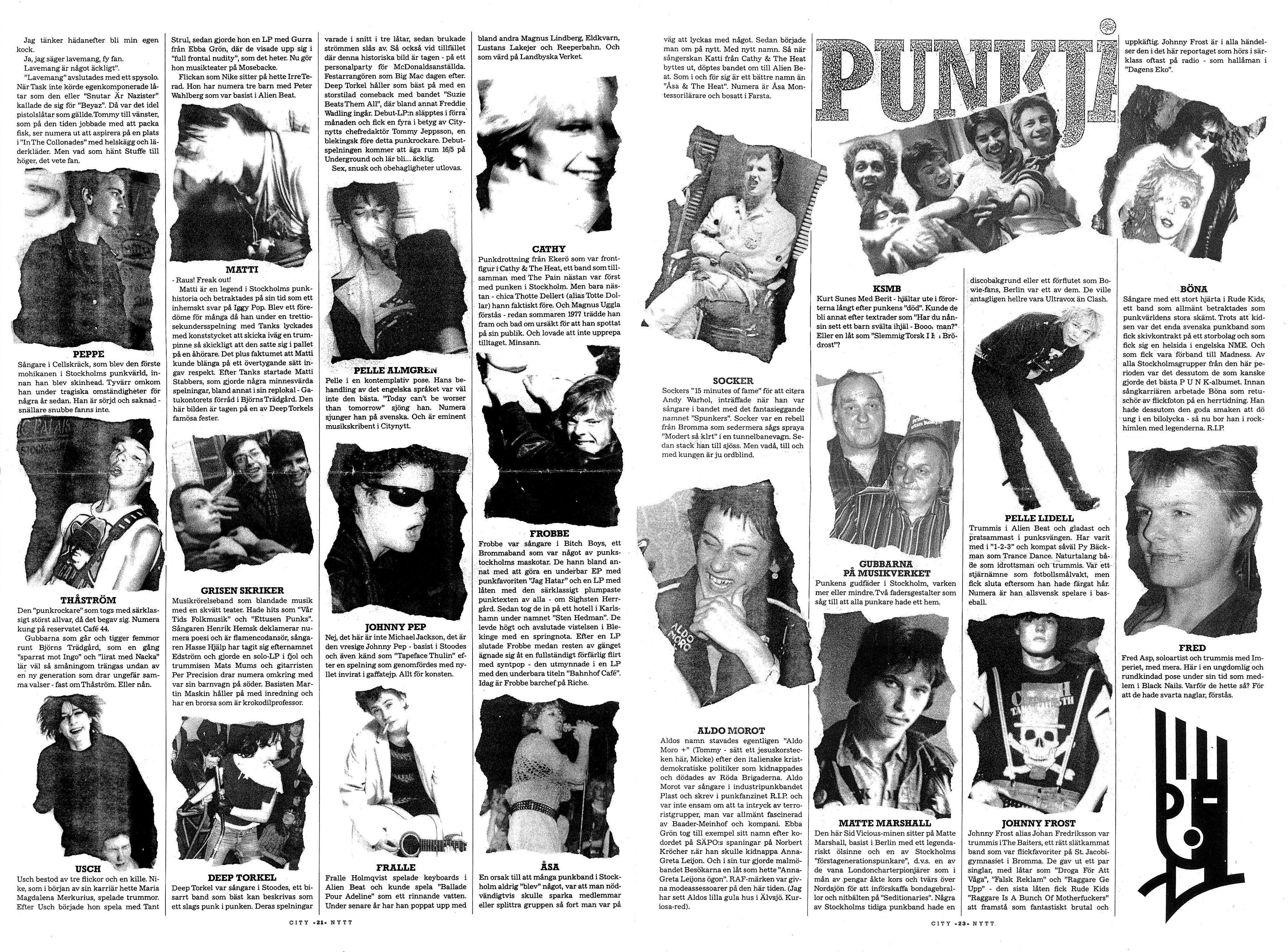 punkjavlar2